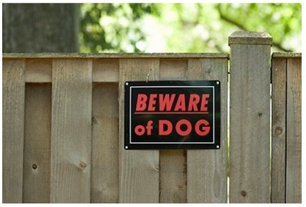 beware_of_dog_sign_on_wooden_fence_yard_sign-002
